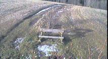 Náhledový obrázek webkamery Bludný - Rajnochovice Troják