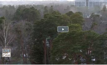 Náhledový obrázek webkamery Jurmala - Park
