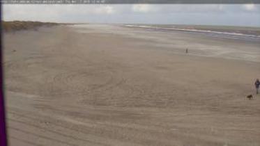 Náhledový obrázek webkamery Nes