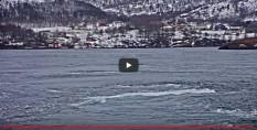 Náhledový obrázek webkamery Saltstraumen