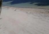 Náhledový obrázek webkamery Pláž Greenyard Bulabog Kite