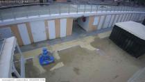 Náhledový obrázek webkamery Gabbice Mare - Beach Bagni 32