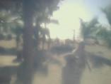 Náhledový obrázek webkamery pláž Costa Maya