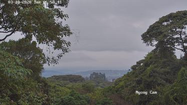 Náhledový obrázek webkamery Ngong Hills