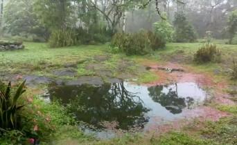 Náhledový obrázek webkamery Galapágy