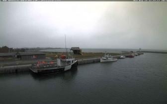 Náhledový obrázek webkamery Belliveaus Cove