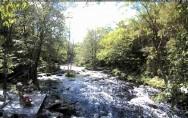 Náhledový obrázek webkamery Caledonia - Mersey River Chalets