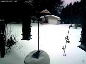 Náhledový obrázek webkamery Central Lake
