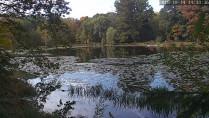 Náhledový obrázek webkamery Averill Park