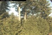 Náhledový obrázek webkamery Camano Island