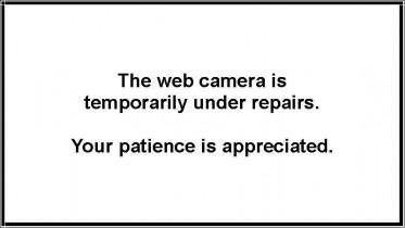 Náhledový obrázek webkamery Antelope Hills