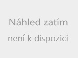 Náhledový obrázek webkamery Karlův most